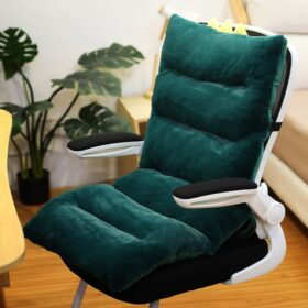 Fluffy Back Support Cushions